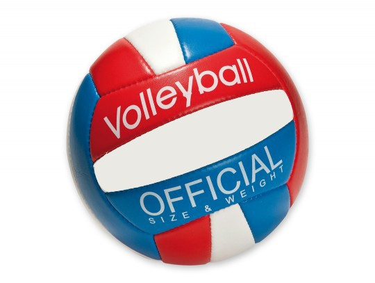 Volleyball Indoor Official